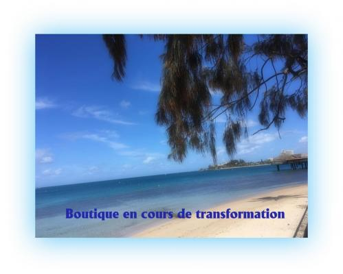 Boutique en cours de transformation 11 2019