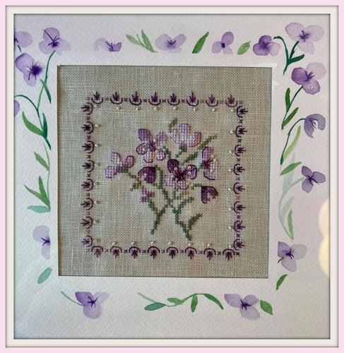 Kit Petites Violettes