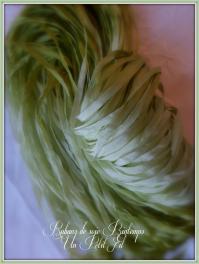 Rubans de soie printemps un petit fil