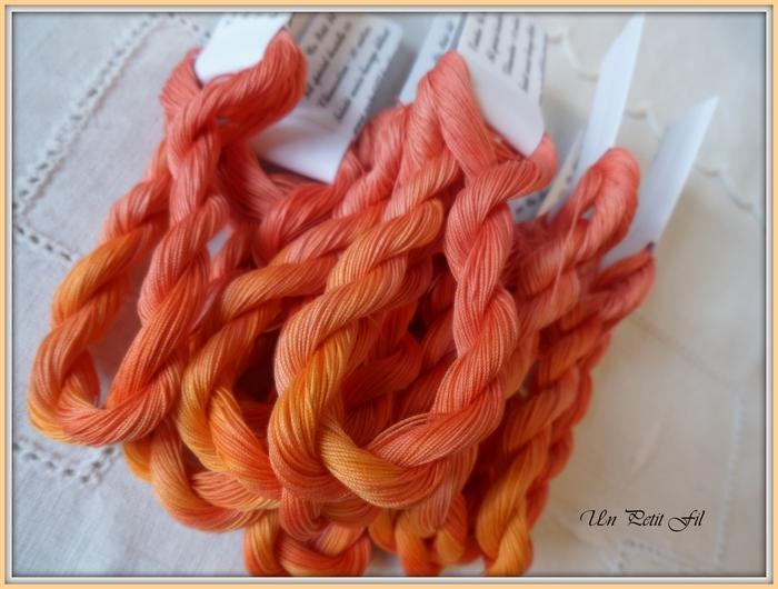 special-dentelle-clementine.jpg